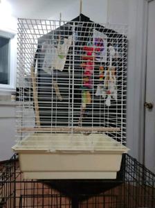 Grande cage pour oiseaux ou petit perroquets