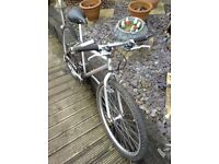Dakar large boys/ short men's pedal bike cheap! Look now!