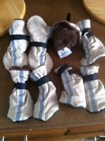Top Paw dog booties