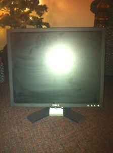 19' Dell flat screen monitor