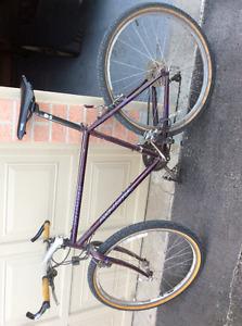 Men's Specialized mountain bike