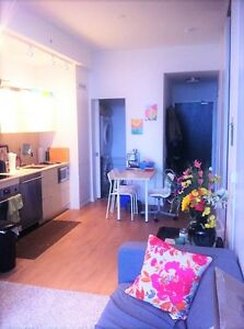 BRAND NEW QUEEN AND SPADINA FURNISHED APPARTMENT-FOR JULY AUGUST