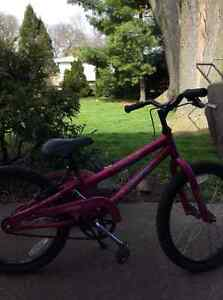 Pink norco bicycle