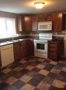 East End Apartment for rent! Available immediately! St. John's Newfoundland image 4