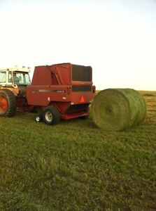 Second Cut Alfalfa Bales For Sale