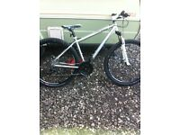 Coyote Turnpike 29er Bike for Sale