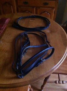 English Bridle and reins.   Never used  Peterborough Peterborough Area image 1