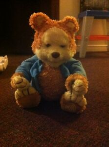 My best friend TJ the talking bear