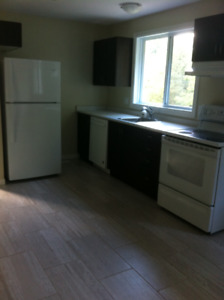 Recently renovated 3 bedroom house for rent
