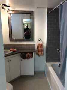 Furnished 2bdrm with great weekly and monthly discounts Kingston Kingston Area image 5