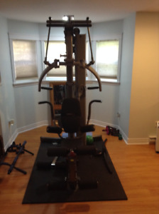 Brand New Fusion 600 by Body Solid Weight Machine
