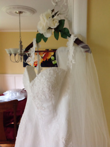 Wedding dress and cathedral veil