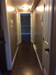 Beautiful East End Basement Apartment for rent!