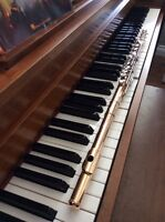 Flute and Piano Lessons South