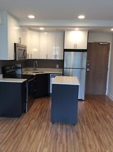 BRAND NEW, High Quality Suites for Rent in Centretown West!