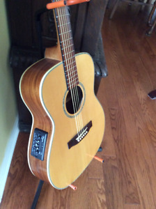 Takamine EG 501 S acoustic/electric guitar(mint)
