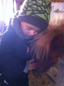 Horsemanship lessons for young kids.