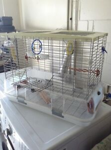 Great Lot of Birds and Cages!!