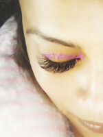 Hybrid Special $50 Eyelash extension - Need Model for Portfolio