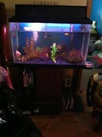 Fresh water complete set up $250