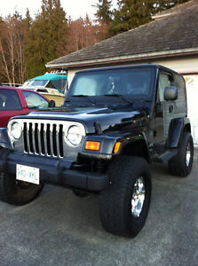 2003 Jeep TJ Rocky Mountain Edition Other