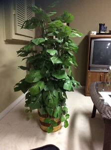 Artificial plant and planter