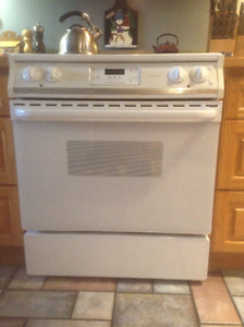 Frigidaire Gallery Glass Top Convection Oven