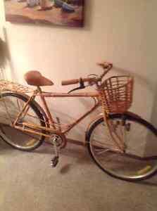 Wicker covered bike