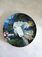 Cockatoo Collector Plate