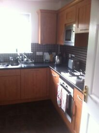 Double ensuite room in 2 bed flat