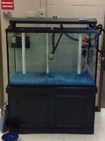 175 gallon fish tank and stand