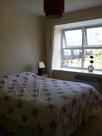 Large furnished double room