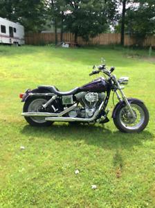 Harley- Davidson Dyna 1450, 2001 Low Ryder 7800 $ disc.