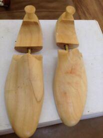 Shoe shape savers
