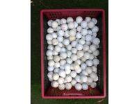 100 Golf Balls - Practice Standard.