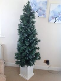 Christmas Tree Gree, white Frosted empire mixed pine life- like Christmas tree