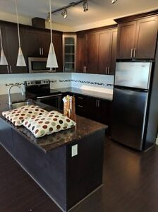 $1950/2br-873ft2-New 2BR 2BT Unit, Avail July 1st-Port Coquitlam