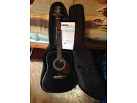 Acoustic Guitar and TGI case