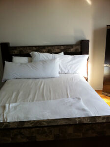 Beautiful and Spacious Furnished Room for Rent