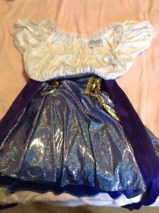 Ladies Gypsy Halloween Costume