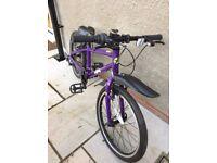 Purple Frog bike 55 frame