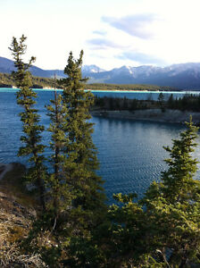 Seeking Canmore Room Rental