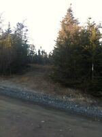 Cottage lot  or year round living near Colinet
