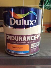 Dulux Endurance + Paint