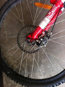 21 speed CCM with disk brakes