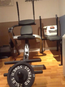 YORK 401 Compact Gym, or  ADER Heavy Duty