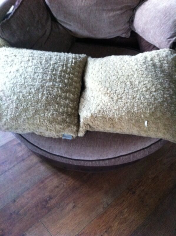2 large feather cushions (please read ad) Norwich