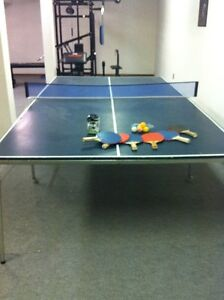 Ping Pong Table (and more)