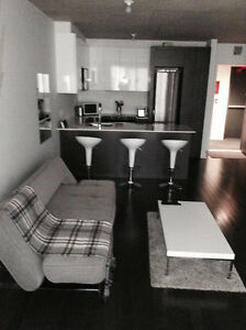 GRIFFINTOWN - Fully Furnished Condo (December 1st)