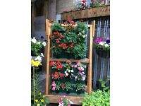 Miniature garden planted planter hanging baskets